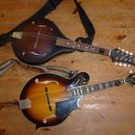 mandoline les