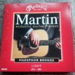 set martin phosphor bronze snaren